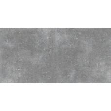 Гранит Глория Серый 1200х599
