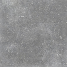 Гранит Глория Серый 599х599