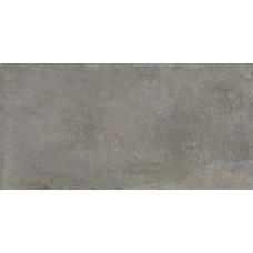 Граните Перла Серый 1200х599