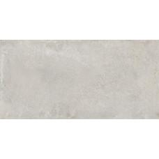 Граните Перла Светло-Серый 1200х599