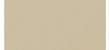 Керамика Будущего МОНОКОЛОР Аворио Матовый 600x300
